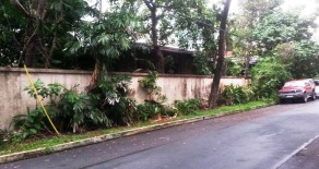 House and Lot for Sale in San Lorenzo Village